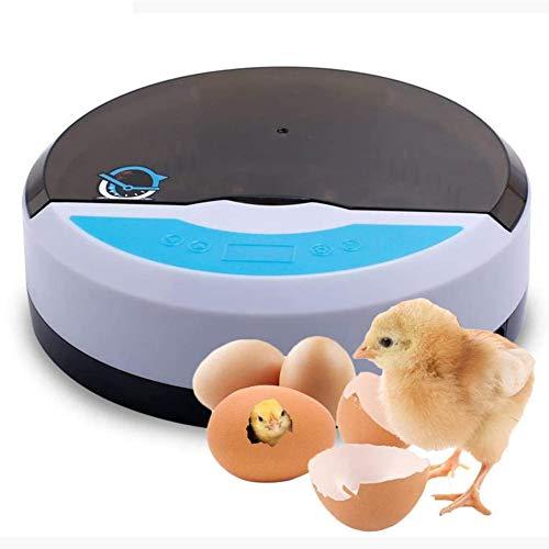 Incubadora semiautomática, incubadora de gallinas, placa de calor de pollitos, incubadora de gallinas, 9 huevos con regulación de temperatura, para uso en casa, regalo para niños