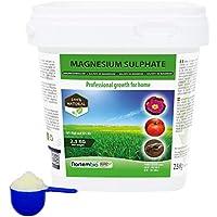 Nortembio Agro Sulfato de Magnesio Natural 2,5 Kg. Abono de Uso Universal. Favorece el Crecimiento de Cultivos, Jardines, Plantas de Interior y Exterior.