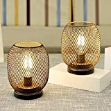 JHY DESIGN Set of 2 Metal Cage LED Lantern Battery Powered,Cordless Accent Light with LED.Great for Weddings,Parties,Patio,Events for Indoors Outdoors(Round Shape)
