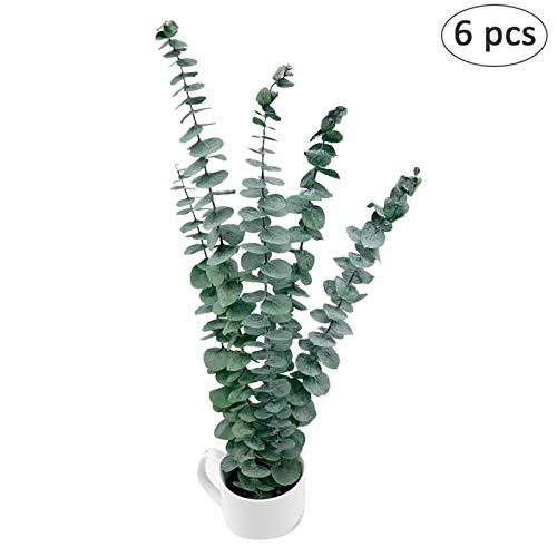 6 piezas. Hoja de eucalipto artificial. Dólar de plata. Ramas verdes. Plantas de plantas falsas. Ramitas. Ramillete. Arreglo floral de hoja perenne. Oficina interior. Decoración de la boda.