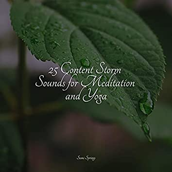 25 Content Storm Sounds for Meditation and Yoga