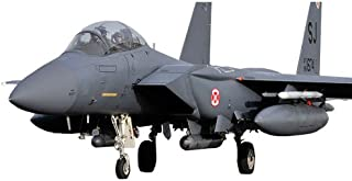 Academy USAF F-15E Seymour Johnson Model Kit