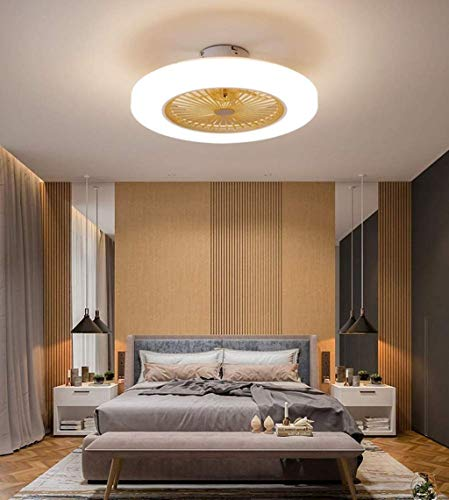 Tengchang 22.5' Ceiling Fan with Light Morden Style Remote...