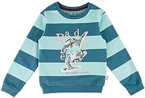 Marks & Spencer Boy's Roald Dahl Badger Sweatshirt, Green Mix