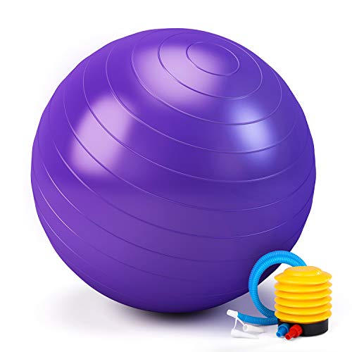 TWING 65CM Yoga Ball Fitness Ball Balance Ball for Pilates, Stability, Workout, Included Exercise Ball Pump (65CM, Purple)