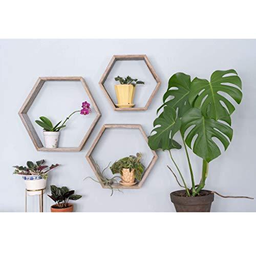 estante hexagonal fabricante BarnwoodUSA