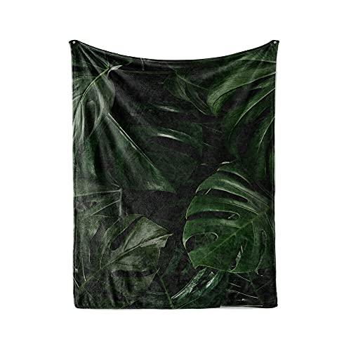 NBEEGFG Manta de invierno para verano y plantas, verde, colc