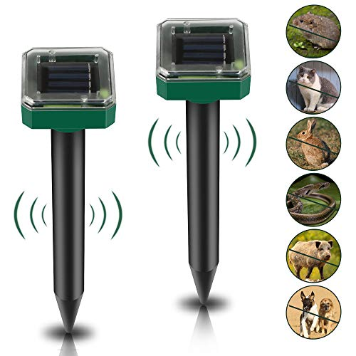 HOSPAOP Solar Maulwurfabwehr - 2 Stück, Ultrasonic Maulwurfschreck, Solar Ultrasonic Tiervertreiber Maulwurfschreck mit IP56 Wasserdicht für Wühlmausvertreiber, Wühlmausschreck, Mole Repellent (Grün)