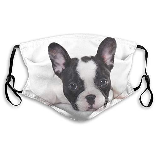 VOSGA Sweet Pet Cute Black White French Bulldog Puppy Face Custom Reusable Half Buff Face Mask Funny Cute Balaclava Bandana Cloth Warmer