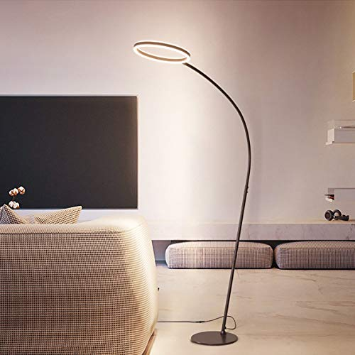 JIAWEI LED oogbescherming vloerlamp - lange mouwen ringlicht traploze dimgordel afstandsbediening - PVC materiaal aluminiumlegering - -26W, bruin