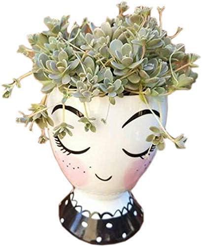 Succulent planter Face pot