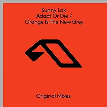 Adapt Or Die / Orange Is The New Grey