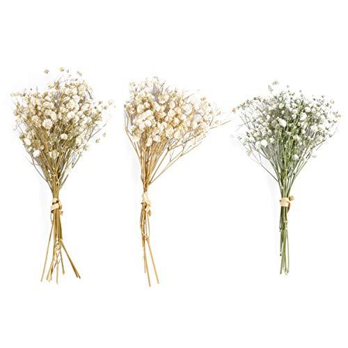 Nbrand - Ramo de flores secas naturales para bebé, soplado, flores secas, arreglos de gypsophile, centro de mesa para jardín, casa, decoración de fiesta