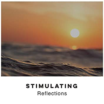 # 1 Album: Stimulating Reflections
