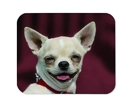 Yeuss Divertente Cane Memes Tappetino Per Mouse Del Mouse Rettangolare Antiscivolo, Testa Di Chihuahua Cane Ritratto A Pelo Corto Sfondo Rosso Tappetini Per Mouse Da Gioco
