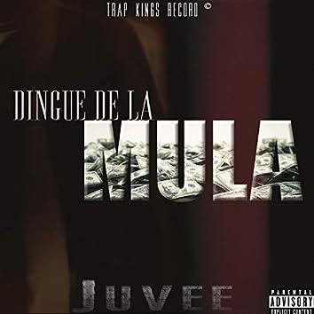 Dingue De La Mula