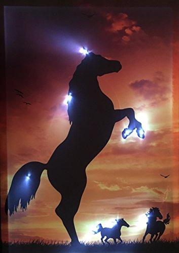 Samarkand-Lights LED-Bild mit Beleuchtung LED- Bilder Leinwandbild 65 x 45 cm Leuchtbild Pferde Wandbild