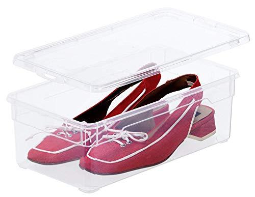 Rotho Clear Box Lady Shoe Aufbewahrungsbox 5 l mit Deckel , Kunststoff (PP), transparent, 5 Liter (33 x 19 x11 cm)