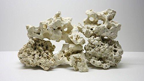 Pro STÜCK Premium weißes Lochgestein Größe XL 15-40cm Aquarium Dekostein Felsen