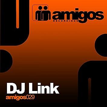 Amigos 029 DJ Link