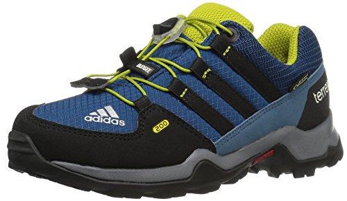 adidas Outdoor Terrex Gore-Tex Hiking Boot (Little Kid/Big Kid)
