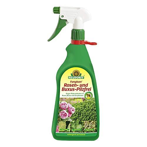 Neudorff Fungisan Rosen und Buxus Pilzfrei AF - 1 Liter