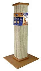 Essential Needs Before Raising A Cat - cat scratching post