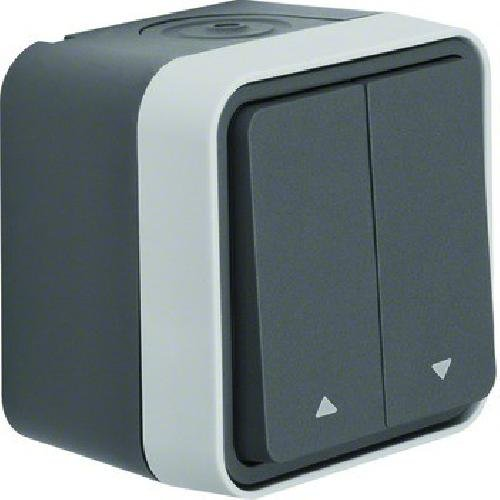 Berker AP-Jalousie-Serienschalter 30753525 1polig Symbol Pfeil lichtgrau, 250 V