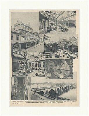 Kunstdruck Apfelwein-Kneipen in Sachsenhausen-Frankfurt a. M. Deutsches Reich Stadt ED 0144