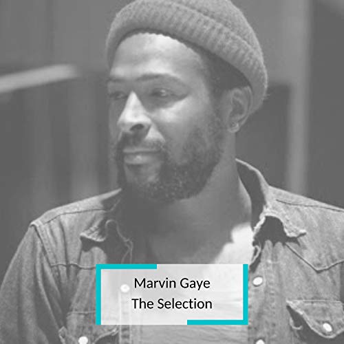 Marvin Gaye - The Selection