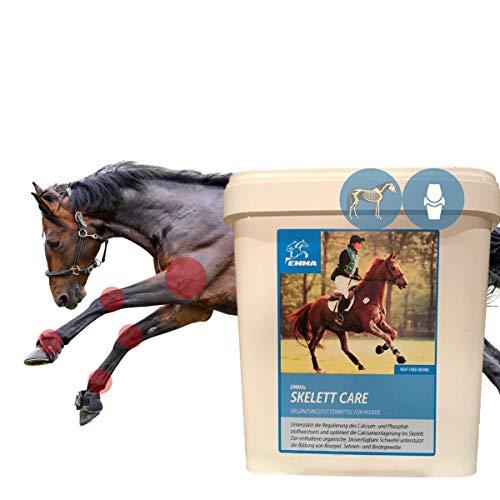 EMMA MSM Pferd I Schwefelpulver I Gelenkpulver + Calcium Vitamine C K 3 für Gelenke Bänder Sehnen Knorpel I stabile Knochen I Gelenkfunktion I Bewegungsapparat I Knochenaufbau Pferde 3 Kg