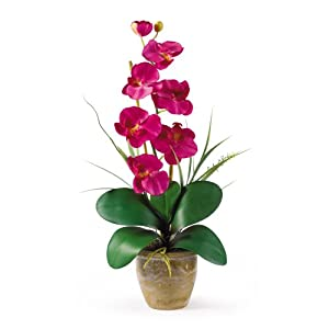 Nearly Natural Nearly Natural 1016 Phalaenopsis Silk Orchid Flower Arrangement 1