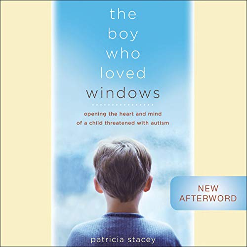 The Boy Who Loved Windows cover art