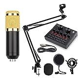 Ybzx BM-800 Kit de micrófono de suspensión Profesional Studio Live Stream Broadcasting Recording Juego de micrófono de Condensador