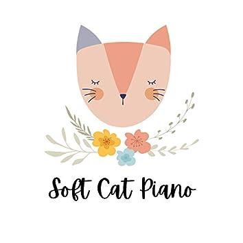 Soft Cat Piano