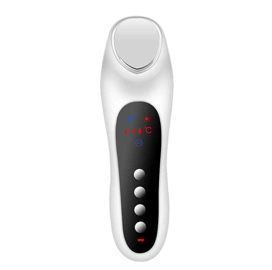 内向き異なる対処する美機械USBの充満スキンケアの顔の冷たいハンマーのマッサージャー (Color : 白)