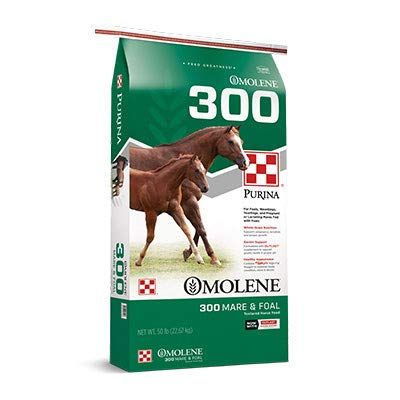 Purina | Omolene #300 Mare & Foal Horse Feed | 50 pounds (50 lb) Bag