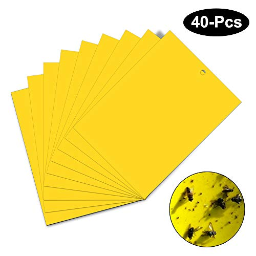 Vegena Gelbsticker Trauermücken 40 Stücke, Klebrige Insektenfallen, Beidseitig Fliegenfänger Sticker für Weiße Fliegen, Blattläuse, Blatt Bergmann, Motten andere Insekten,15cm x 20cm