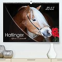 Haflinger-Pferde in Reinzucht (Premium, hochwertiger DIN A2 Wandkalender 2022, Kunstdruck in Hochglanz): Pferde aus purem Gold... (Monatskalender, 14 Seiten )
