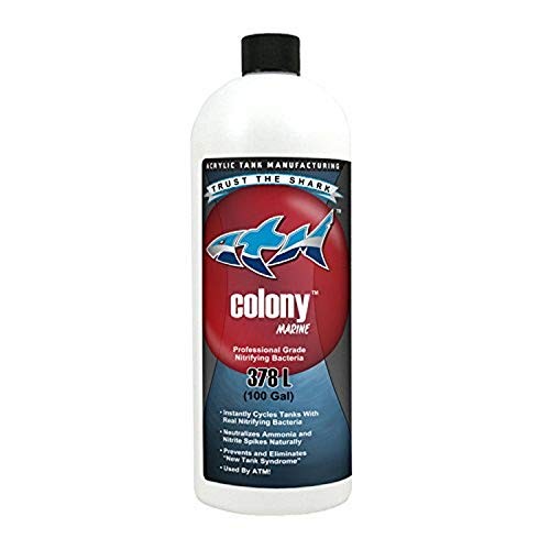 ATM Aquarium Products Colony Marine Nitrifying Bacteria 100 gal Cycle 32 oz