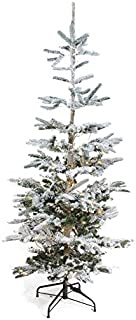Northlight 6.5' Pre-Lit Noble Fir Artificial Flocked Christmas Tree - Warm Clear LED Lights