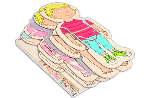 Beleduc 17160 - Lagen-Puzzle Dein Körper Mädchen, Extra Folie mit Darstellung des Blutkreislaufes, Bewährt im Kindergarten