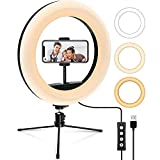 リングライト 10.2インチ 3モード 【2020最新版】USB給電 LED卓上 三脚スタンド 照明 補助光 美顔 生放送 ライブ 美容化粧 自撮り写真 カメラ撮影用 YAKAON