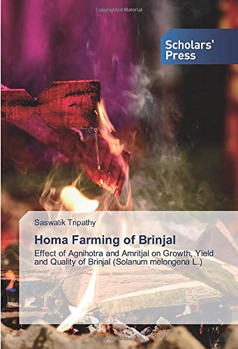 Homa Farming of Brinjal: Effect of Agnihotra and Amritjal on Growth, Yield and Quality of Brinjal (Solanum melongena L.)