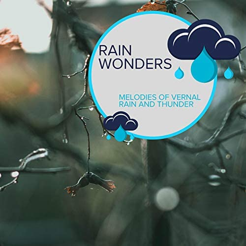 Rain Recordings & Everyday Rain Stories