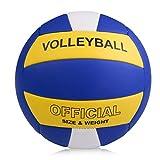 バレーボール 5号球 スポーツボール ソフト軽量 柔らかい 練習用初心者 家庭婦人バレー 青白黄