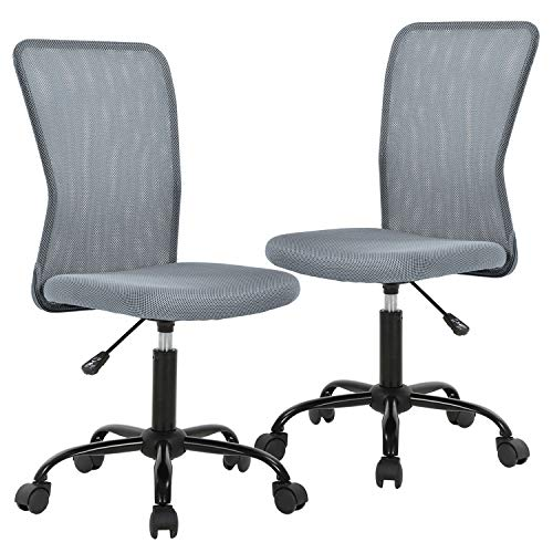 Ergonomic Office Chair Desk Chair Mesh Computer Chair with Lumbar Support No Arms Swivel Rolling Executive Chair for Back Pain 2 Pack (Grey)