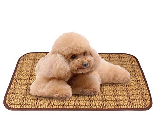 ColorMilky Cama de Forro Polar para Perro o Gato, se Puede Lavar a máquina