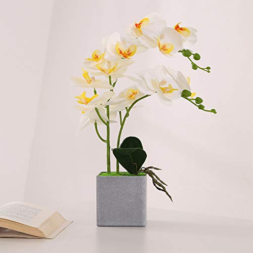 ENCOFT Flores Artificiales Plástico Flor de Phalaenopsis Realista Orquídea Mariposa con Maceta Imitación Cerámica Decoración