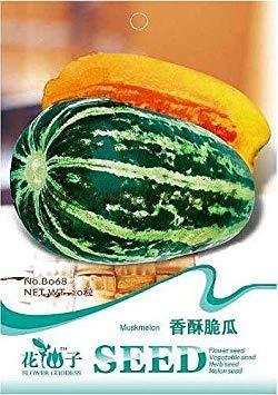 Vista 1 paquet professionnel, environ 20 graines/paquet, graines de bonsaï Jaune Citron, Fruits comestibles à Planter à l